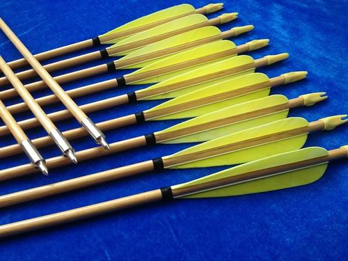 yellow h nocked wood archery arrows