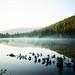 Bear Lake - Pentax 67 + Portra 400 by www.trentonmichael.com