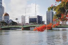 Recife - Ponte Santa Isabel