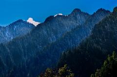 ridges after ridges