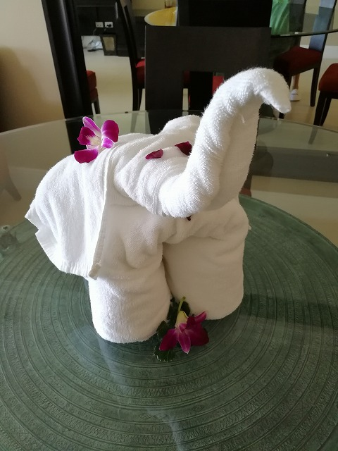 <p>タオルアートの象さん</p>