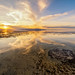 "Great Salt Lake by Scott Stringham ""Rustling Leaf Design"""