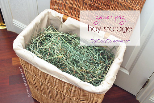 Guinea pig hay storage - wicker laundry bin