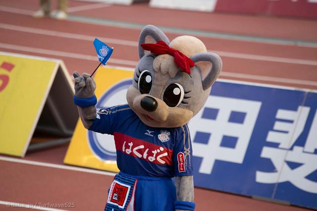 20140506 フォーレちゃん
