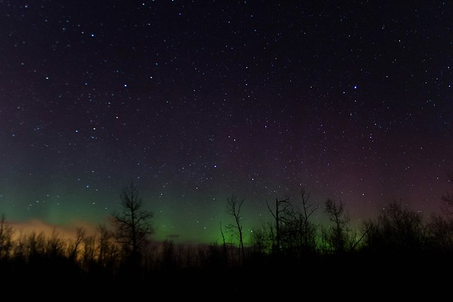 Northern Lights Elk Island 02