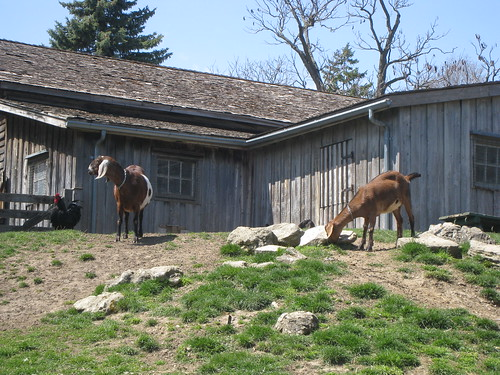 Riverdale Farm