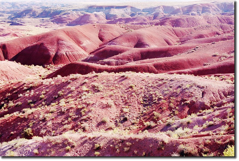 Painted Desert From Tiponi point 16
