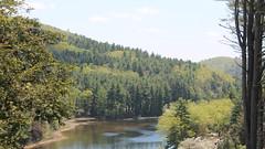 Lake Mcdonough