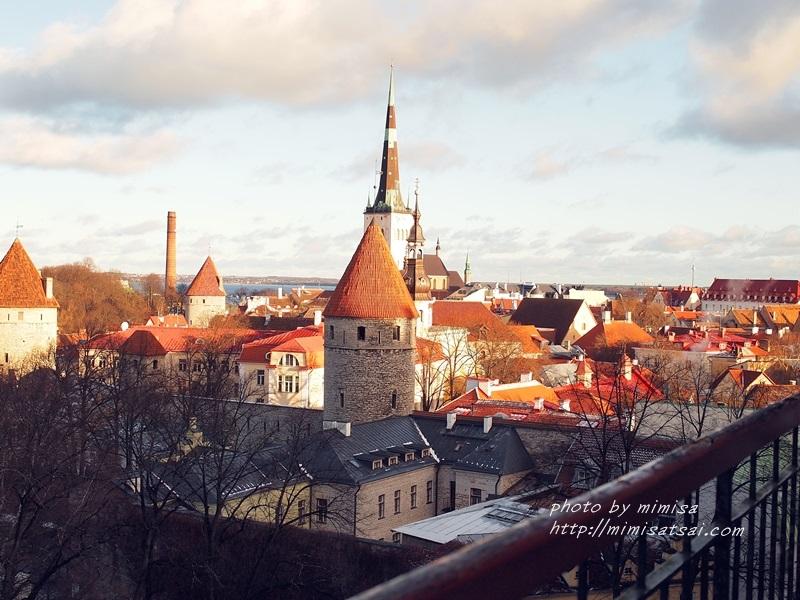 愛沙尼亞 塔林 旅遊 (30)
