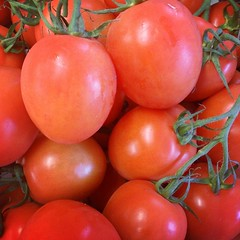 Getting some wonderful plum tomatoes at the moment.