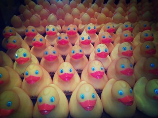Army of ducks @ The Peabody Hotel