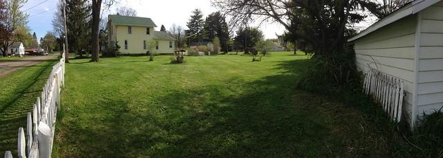 Lawn; mowed