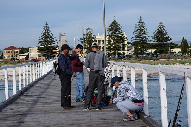 Largs jetty - fishing