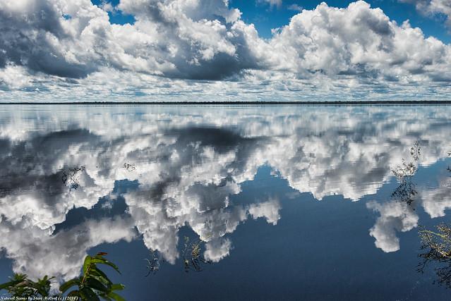 Rio Negro on a Calm Day