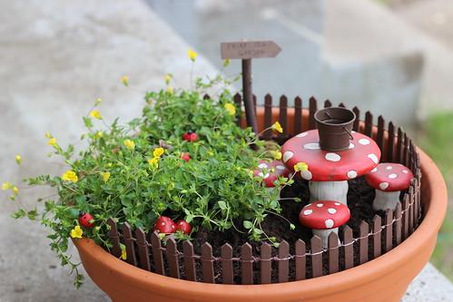 Fairy Garden 7