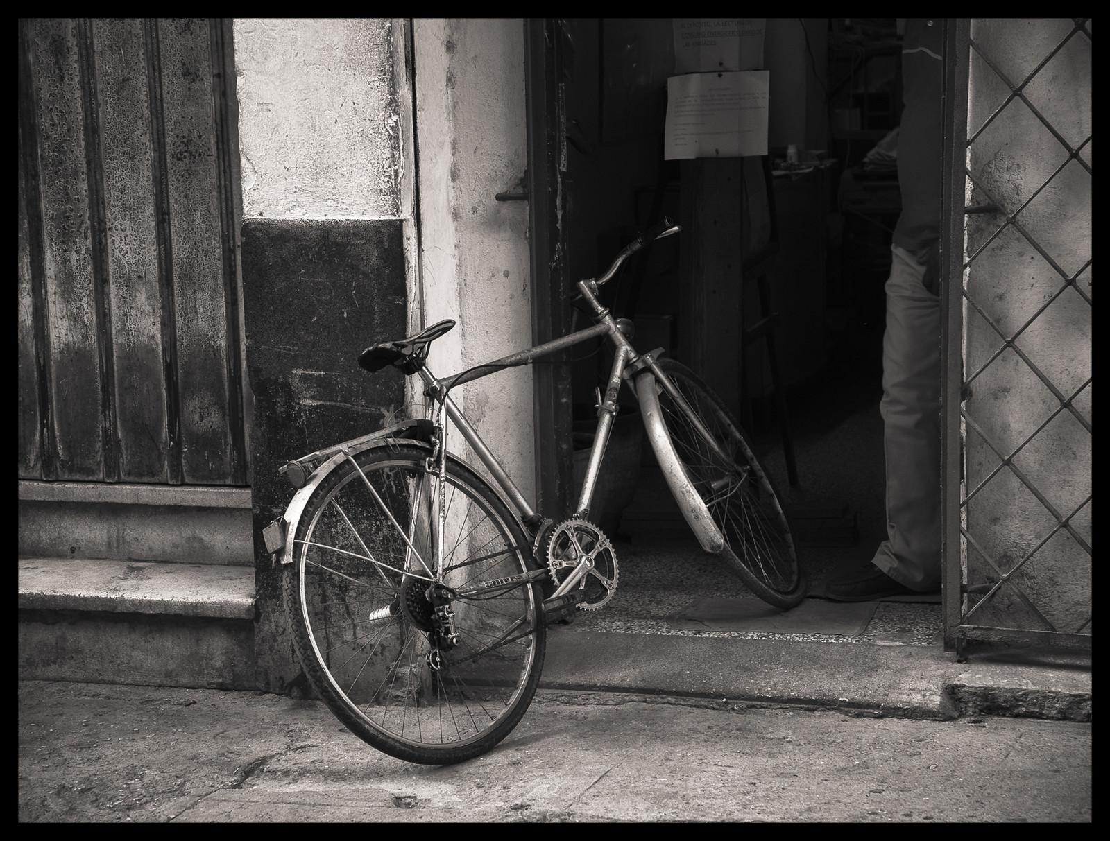 Ready - Havana - 2013