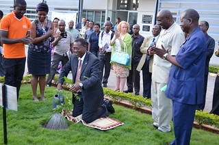 Official opening of the ILRI-Tanzania office: Tree planting