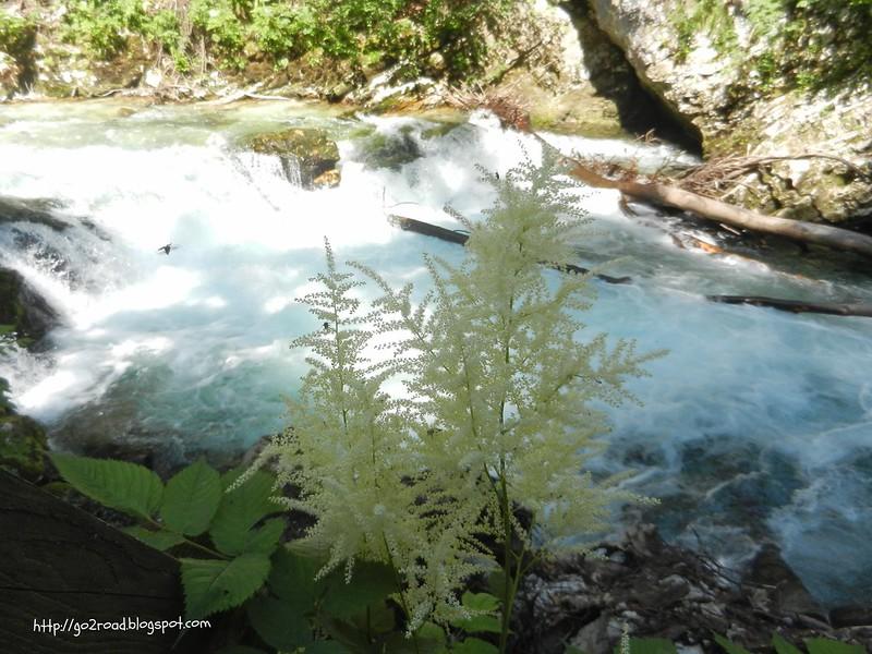 Прогуливаясь вдоль речки Радовны