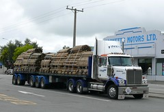 Western Star in Culverden