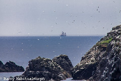 Long Ship at a Distance