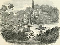 Duyong Island