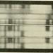 """Image from page 265 of """"Radium; la radioactivité et les radiations, les sciences qui s'y rattachent et leurs applications"""" (1905) by Internet Archive Book Images"""