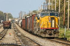 UP 2441 | EMD SD60M | NS Forrest Yard