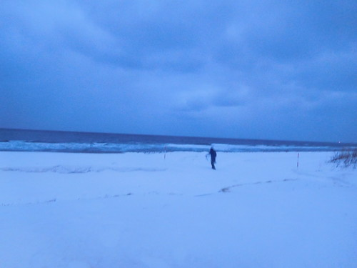 海辺に行こうとしたら薄氷を踏み抜いて海にドボンして即死した