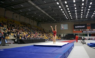 Trampoline WCh Odense/DEN 2015: tumbling overview