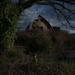 everett abandoned farm by seewhy