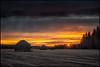 Tre lador i solnedgången
