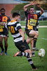 20140418 Rugby_UHRams 3.jpg by ATPhoto_Yellowbond