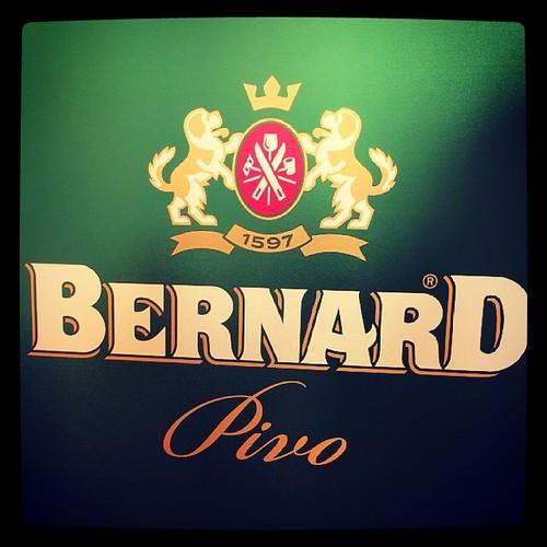 #bernardova #beer #пиво