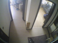 Record by Motion Detection E-mail, 2010-01-01 00:04:26