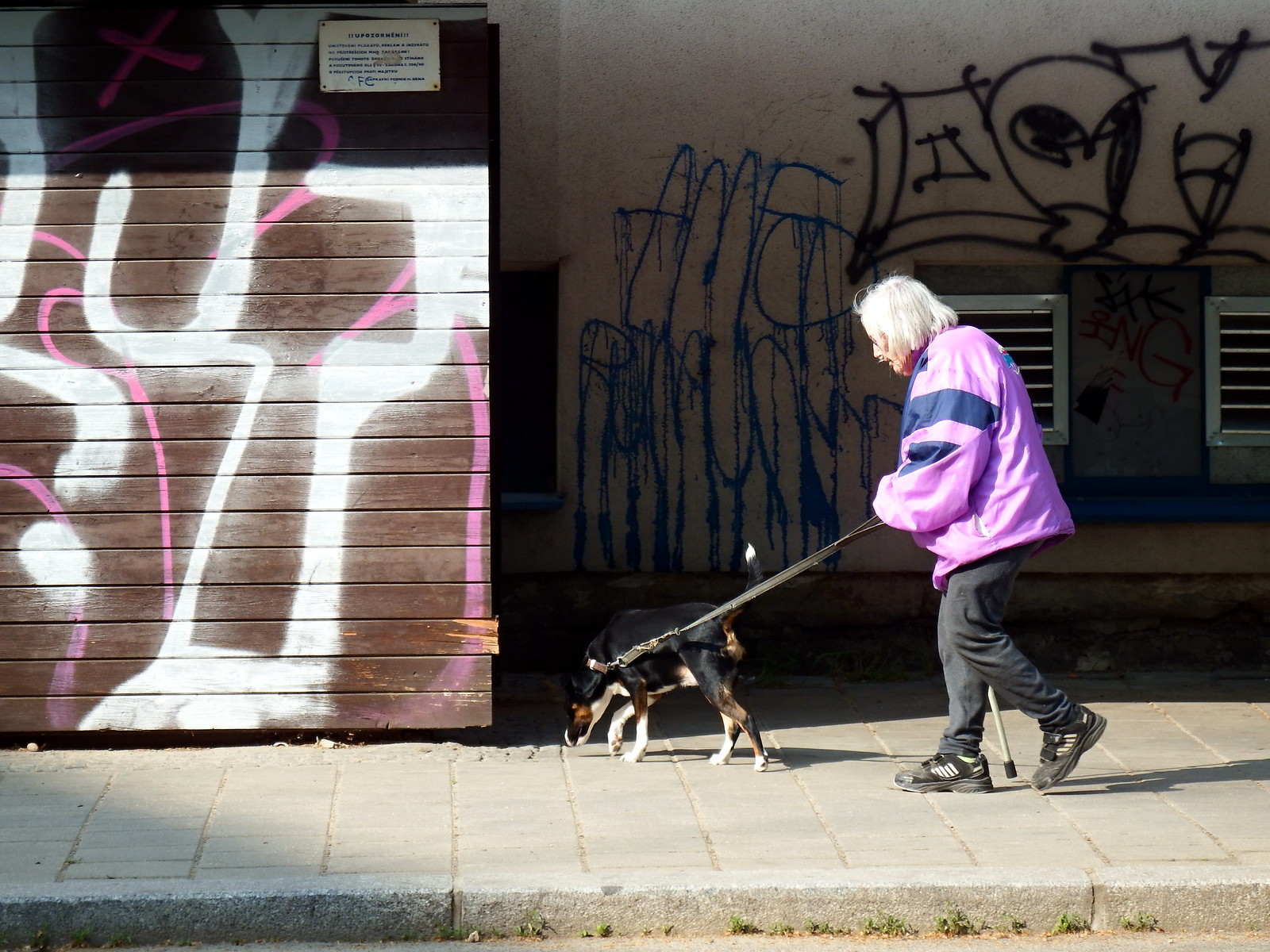 Old Woman with Young Dog