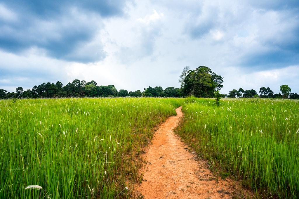 Khao Yai Thailand