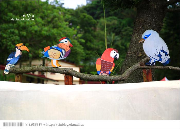 【新竹景點推薦】森林鳥花園~親子旅遊的好去處!在森林裡鳥兒與孩子們的樂園3