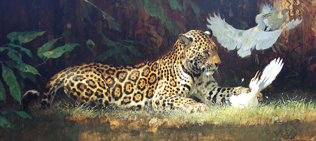 2007008-Kuhn-Jaguar-and-Egrets