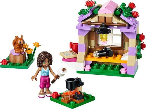 41031 Andrea's Mountain Hut