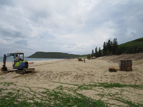 嵵裡沙灘-清除後(圖片來源:海洋公民基金會)