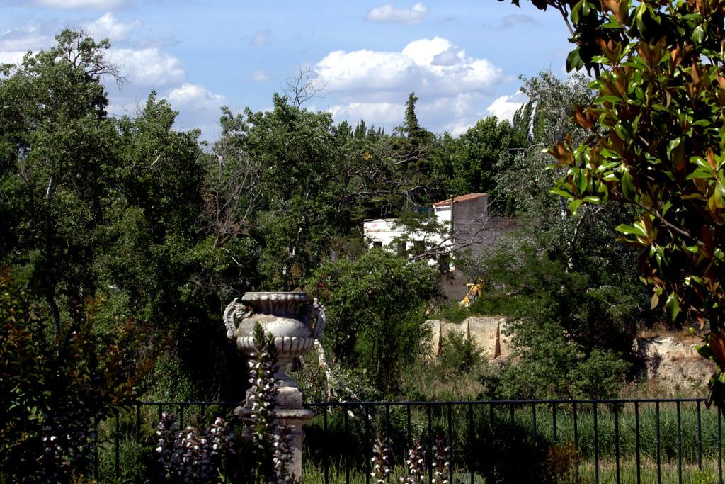 tarde de junio en los jardines de Aranjuez-128