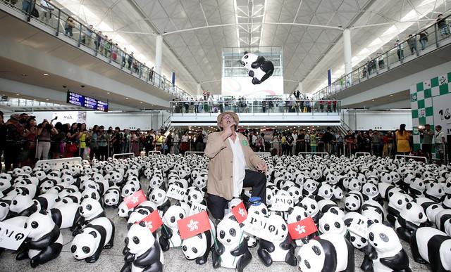 Paulo Grangeon with his pandas