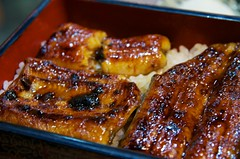 meal, roasting, grilling, unadon, unagi, food, dish, cuisine, teriyaki,