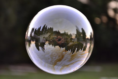 liquid bubble, sunlight, sphere, light, macro photography, fisheye lens, reflection, close-up, circle,