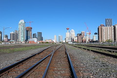 Calgary on the straight and narrow.