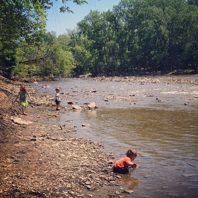 Spent the day getting 3 kids and a dog as muddy as possible at our fav Rocks Water place in the @clevemetroparks #thisiscle #summer #stevensonpartyof5