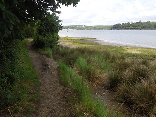 14 06 07 Day 6 - 7 Up the Torridge (3)