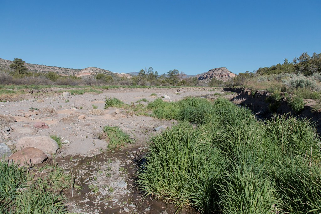 Floods during the thousand-year rain events in September 2013 carved deep channels in the land, called head cutting, in Pueblo Canyon, causing storm water runoff to bypass the wetland.