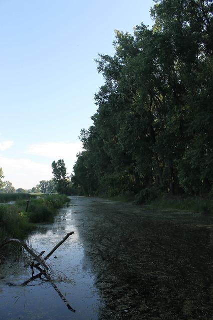Lake St Clair Metropark Nature Center