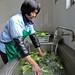 45900-014: Municipal Water Distribution Infrastructure Development Project